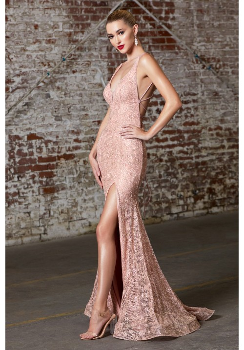 Glitter Embellished Long Gown