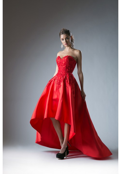 High-Low Red Gown