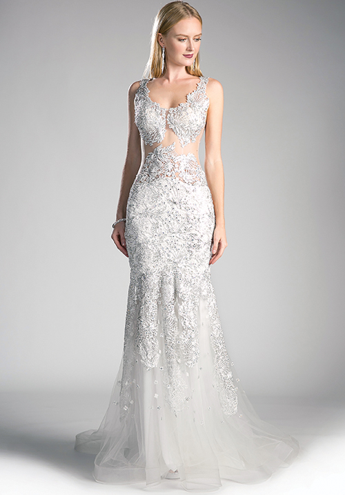 Illusioned Waiste Gown
