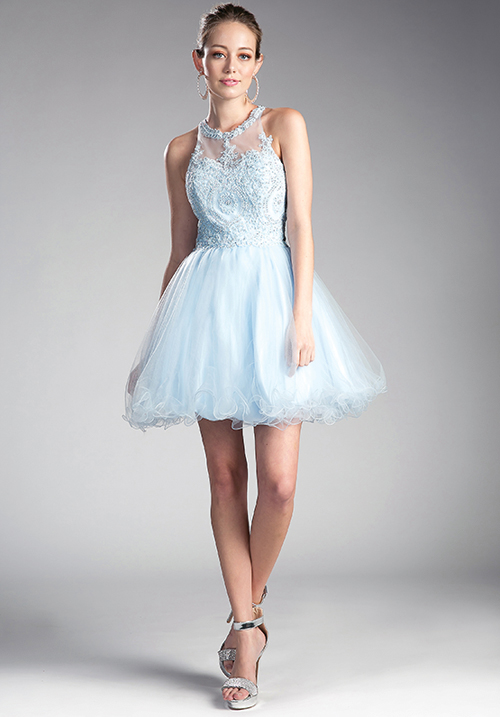 Illusion Neck Embellished Tulle Gown